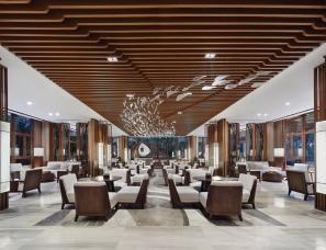 广州共生形态设计--雅居乐铜鼓岭星光城会所