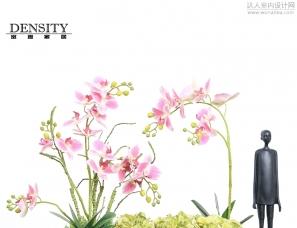 粉色蝴蝶兰盆栽简约新中式客厅玄关摆件吧台橱窗