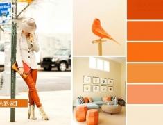 【色彩家】鲜橙色—鲜的每日C,新的一年为家增添活力