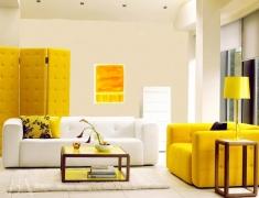 【色彩家】黄色加白色—傲娇时代的高贵与温暖